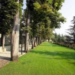 Villa-Lanata-parco